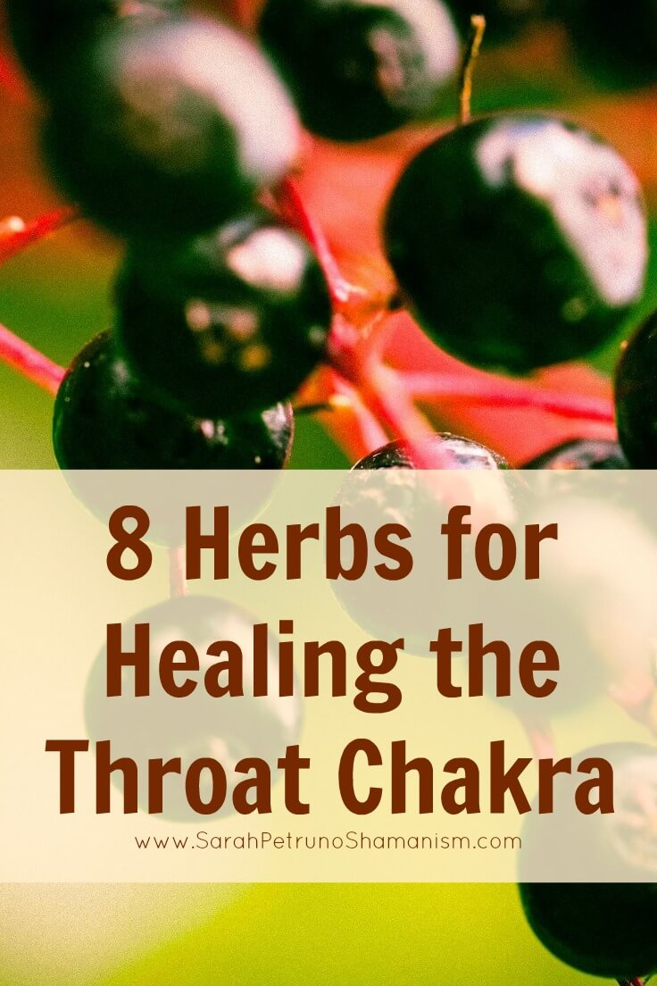 8 herbs that heal and open the throat chakra