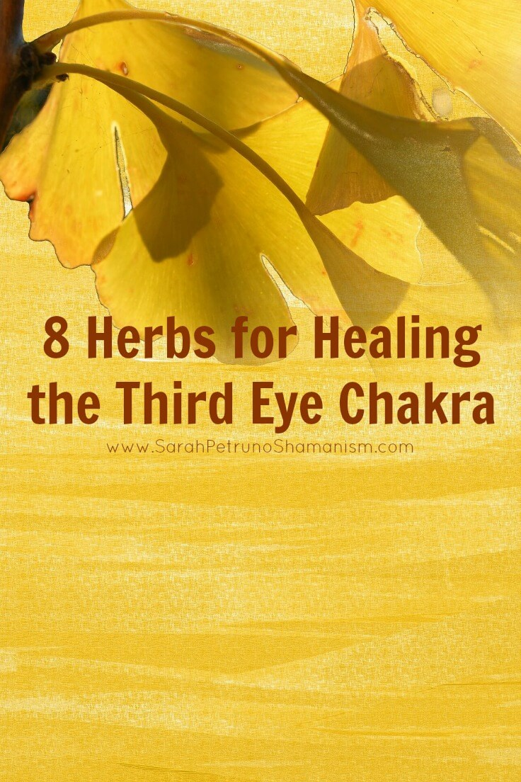 Herbs for healing the third eye or brow chakra