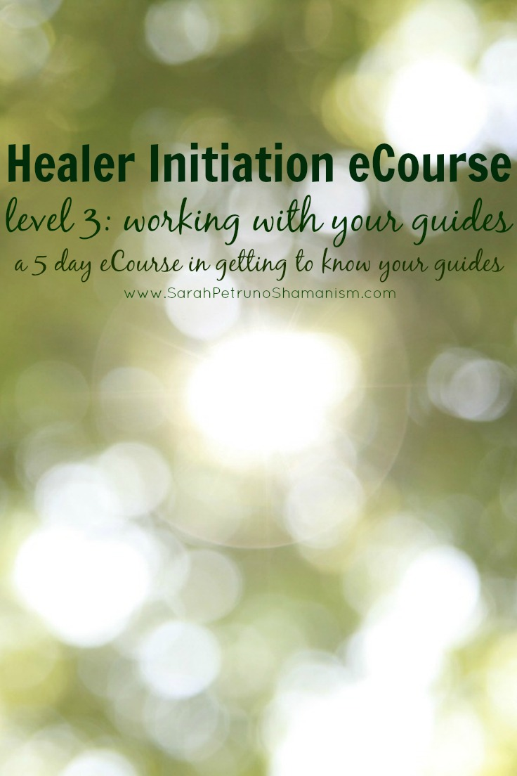 The Healer Initiation Level 3 eCourse is a  5 day, online, intensive eCourse aimed at helping your meet your guides and develop a working relationship with them. Learn more and sign up!