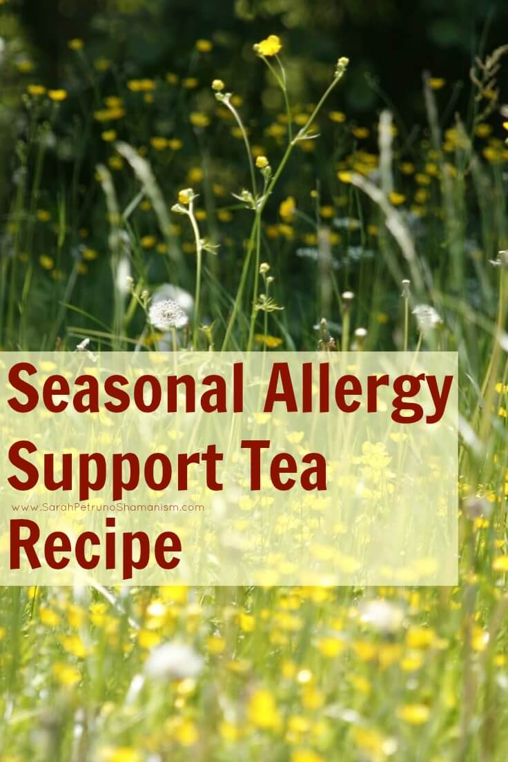 Herbal tea recipe to support the body during the height of seasonal allergies