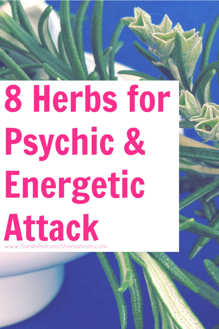 Herbalist Tom Petruno shares 8 of the best herbs to protect you from psychic and energetic attacks - in depth information on how each herb can help you and how you can use those herbs in your life.