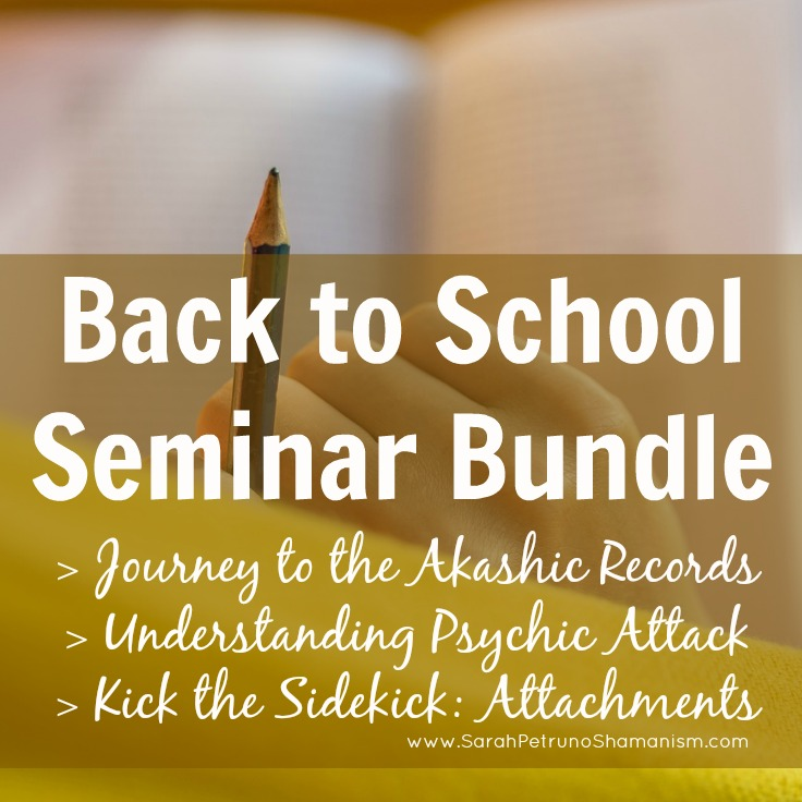 Limited time package offer of the 3 Shamanic Video Classes - Journey to the Akashic Records, Understanding Psychic Attack, and Kick the Sidekick: Spiritual Attachments. Buy all 3 and get $24 off!