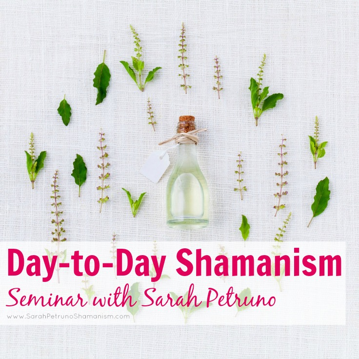 Day-to-Day Shamanism is a 75 minute recorded video seminar + question session with Shamanic Teacher Sarah Petruno. Learn about the different ways you can integrate shamanism into your daily life - from protecting your energy to creating an herbal pantry.