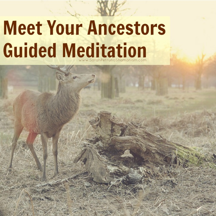 Guided meditation to meet your ancestors in Spirit - created by Sarah Petruno Shamansim.