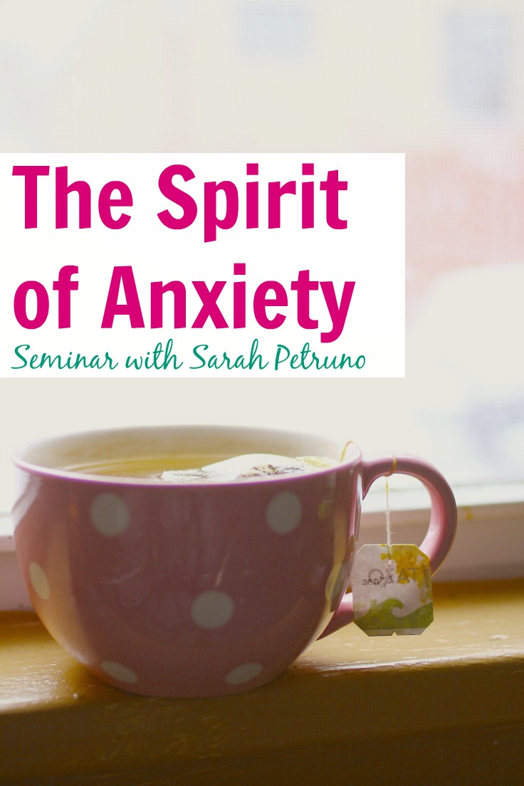 The Spirit of Anxiety Seminar is a 90 minute class on the spiritual and energetic causes of anxiety, and how Sarah Petruno, a shamanic practitioner, healed it spiritually.