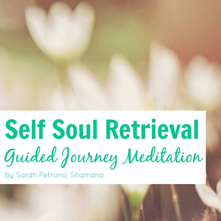 Allow yourself to be guided through a soul retrieval healing session, led by Shamanic Teacher, Sarah Petruno and assisted by your spiritual guides. Complete instructions included.