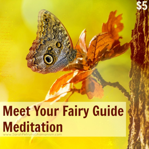 Meet Your Fairy Guide