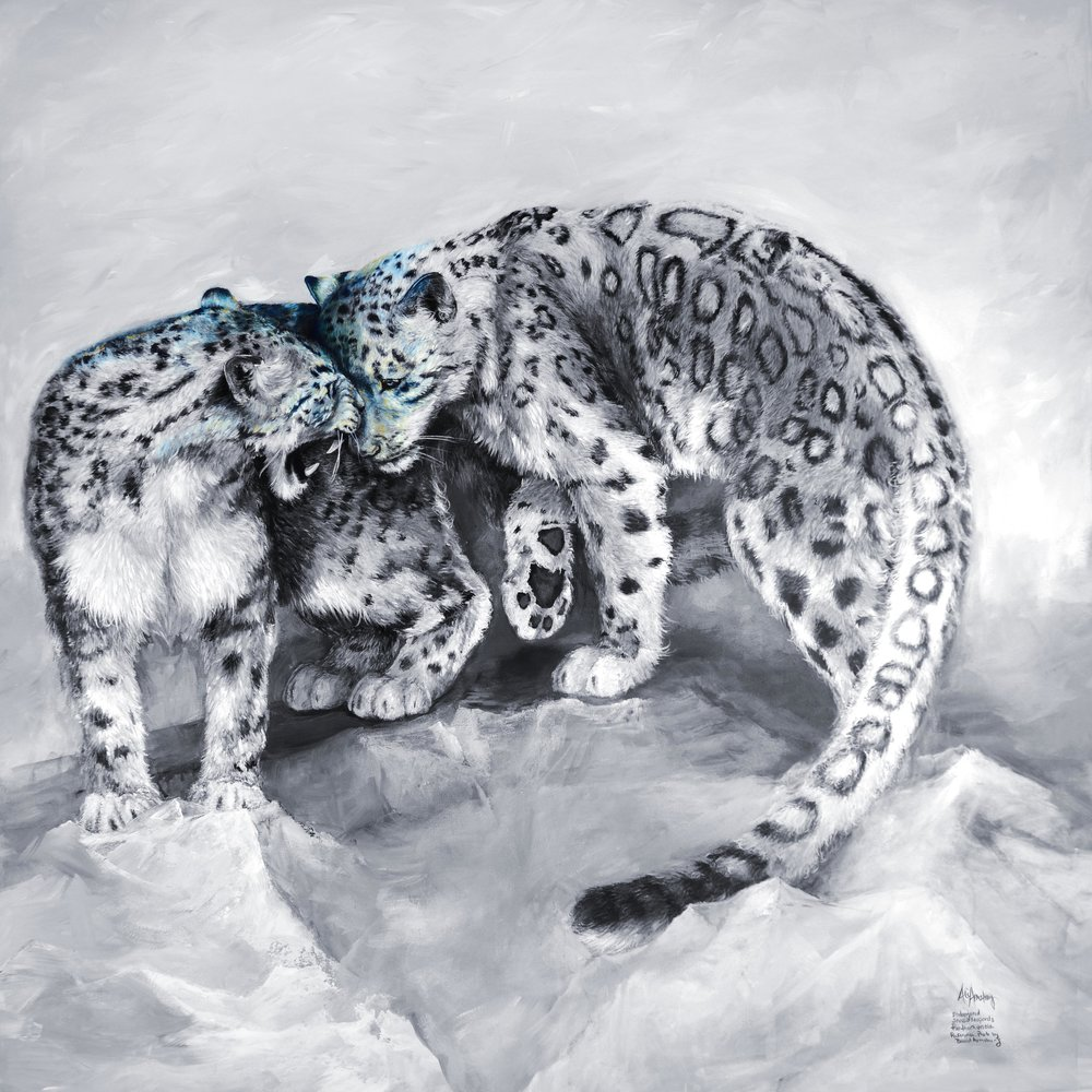 SnowLeopards-aliarmstrong