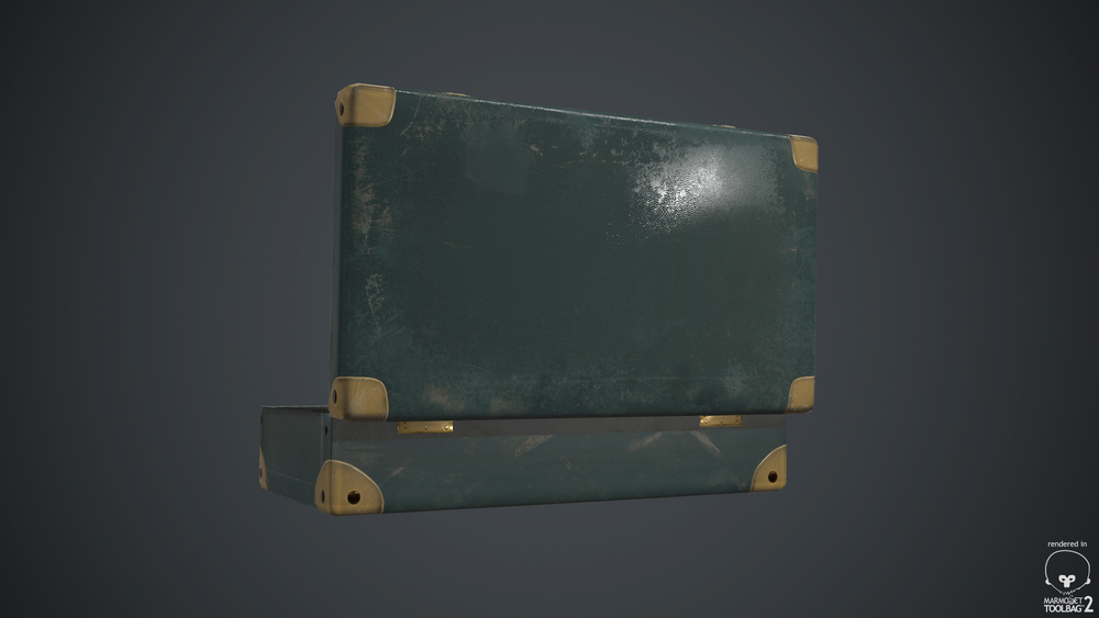 suitcaseback.jpg