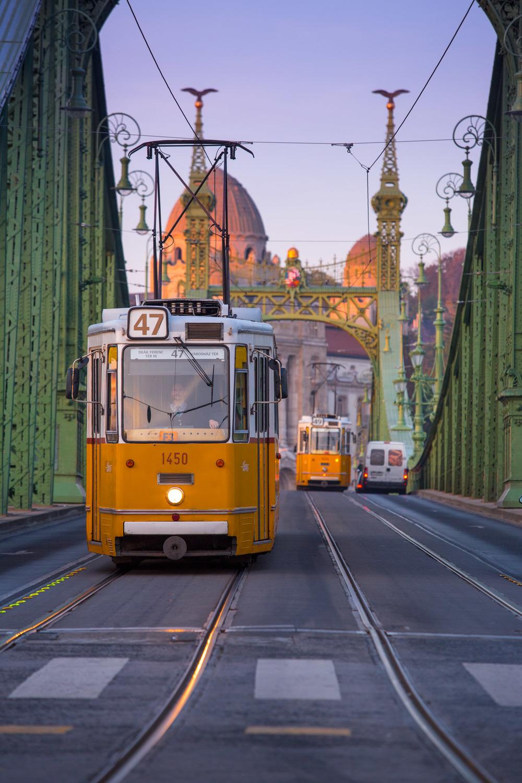 Tram Crosses Liberty Bridge, Budapest, Hungary