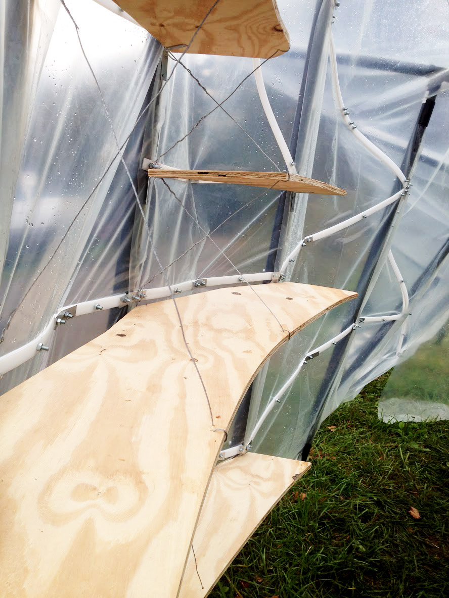 hoop house 2 copy.jpg