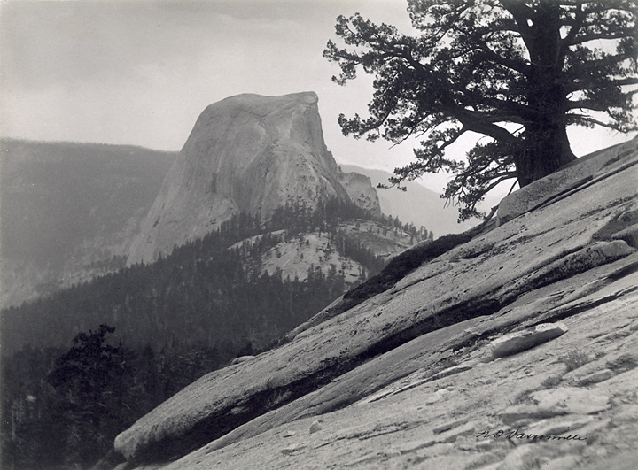 Dome, Yosemite,    1904. Vintage Platinum print. Signed in ink on image. Image measures 6 x 8 inches. Inventory #MC0046  Terms    |    Inquire