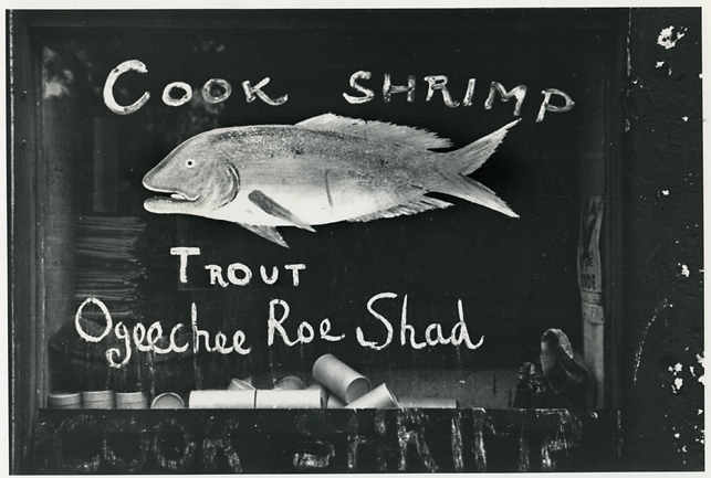 Painted Fish Store Sign, Savannah Vicinity, Georgia,   1934–1935. Gelatin silver print, printed ca. 1960s. Evans' credit stamps on front and back. Image measures 4 5/8 x 7 inches. Inventory #C1450.  Terms    |    Inquire
