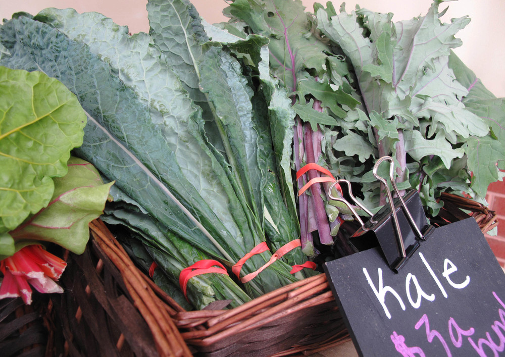 Cold hardy kale is an excellent choice for using in winter salads.                                                                                   Photo: Rachel J Weston