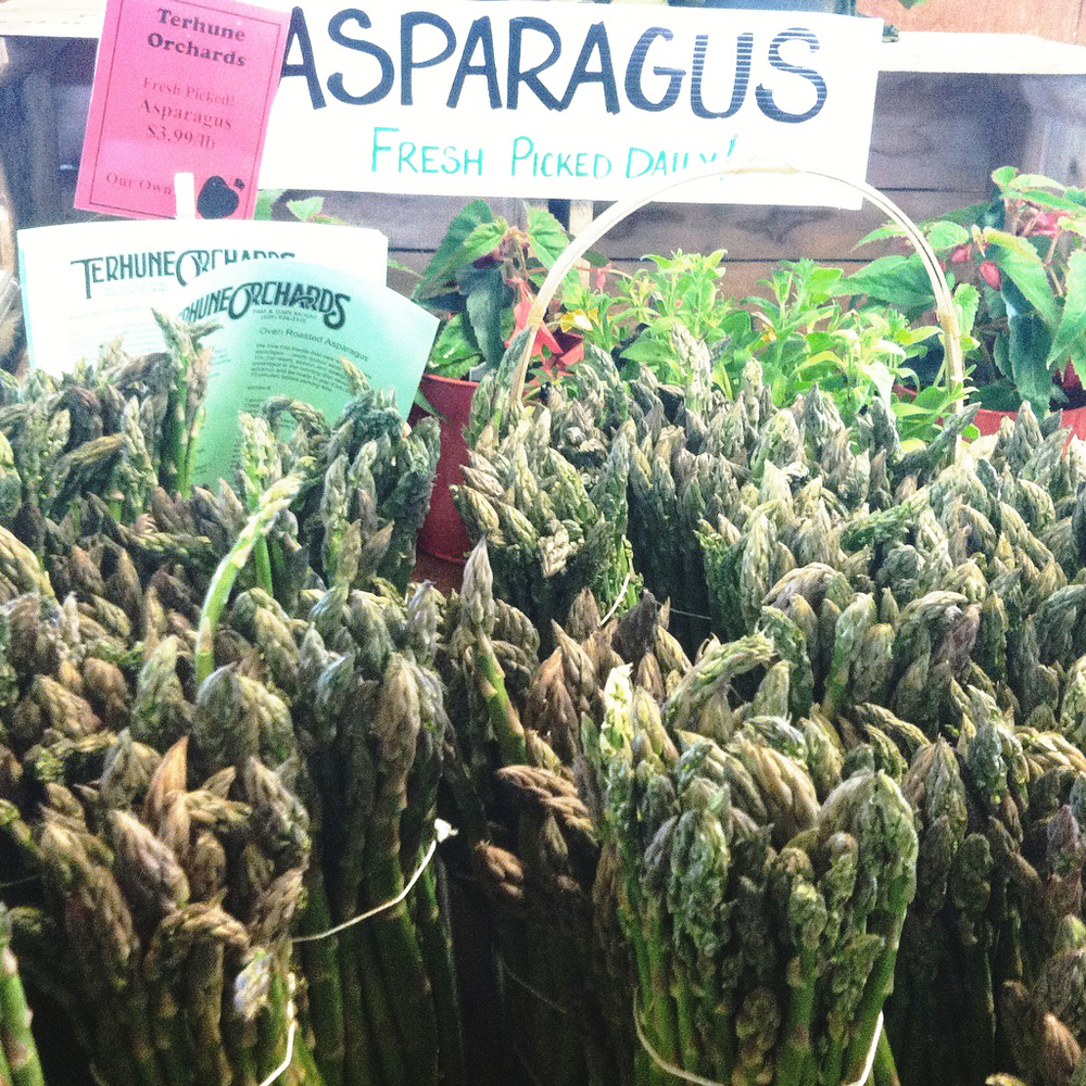 Asparagus season has begun! Terhune Orchards in Princeton, NJ offers it for sale or you may pick your own.                                                                                                                                                                                                                                                          Photo: Rachel J. Weston