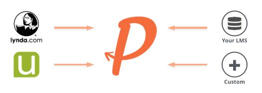 PG Diagram 2.001.jpg