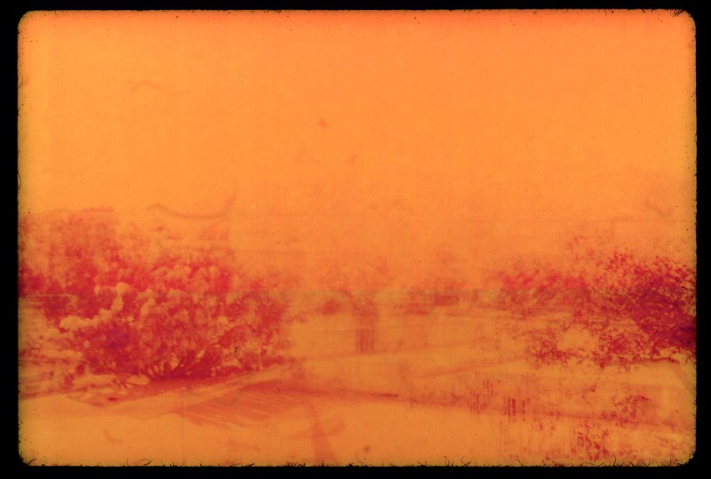 la merced 5 orange_small.jpg