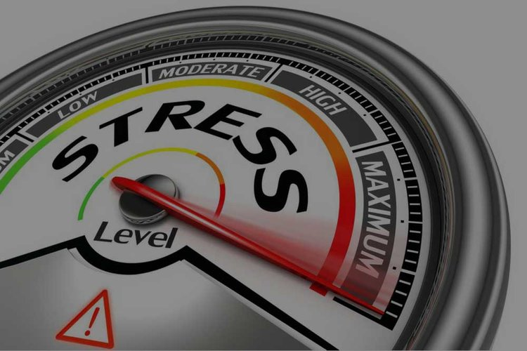 Mood & Stress  - Improve your mood with the right nutrients