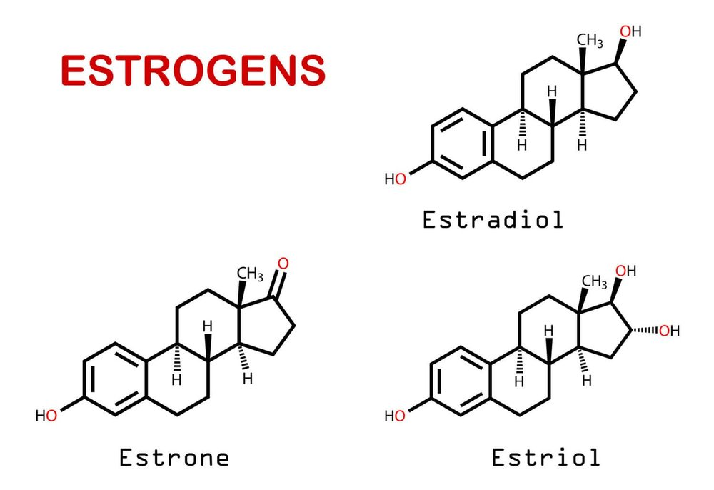 Different forms of oestrogen