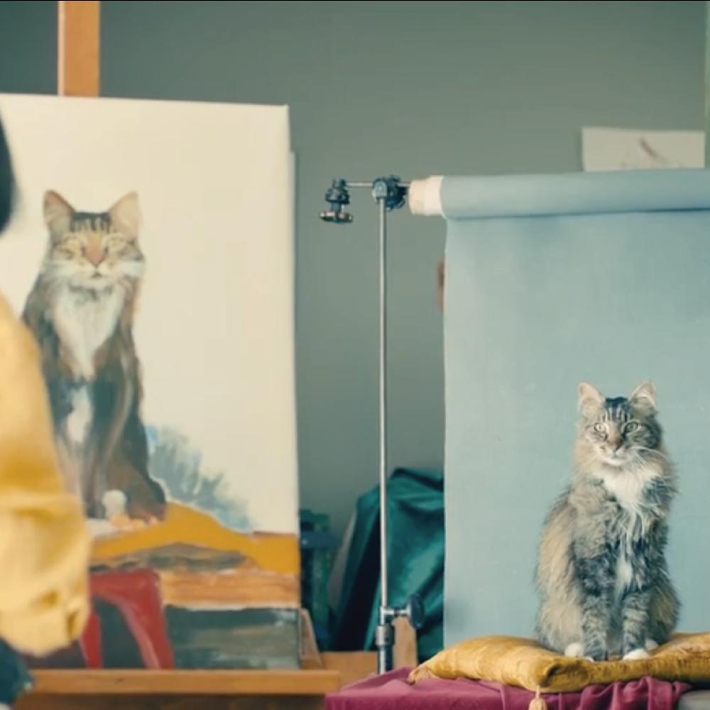 Meow Mix TV