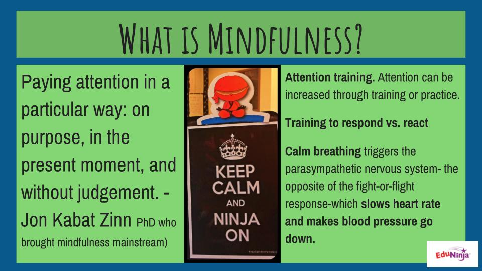 EduNinja™ what is mindfulness.jpg