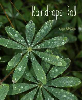 raindropsroll.jpg