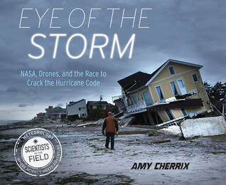 eye of the storm.jpg