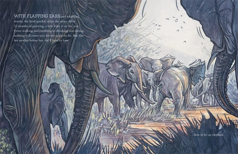 elephantbook.jpg