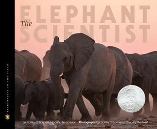 elephantscientist.jpg