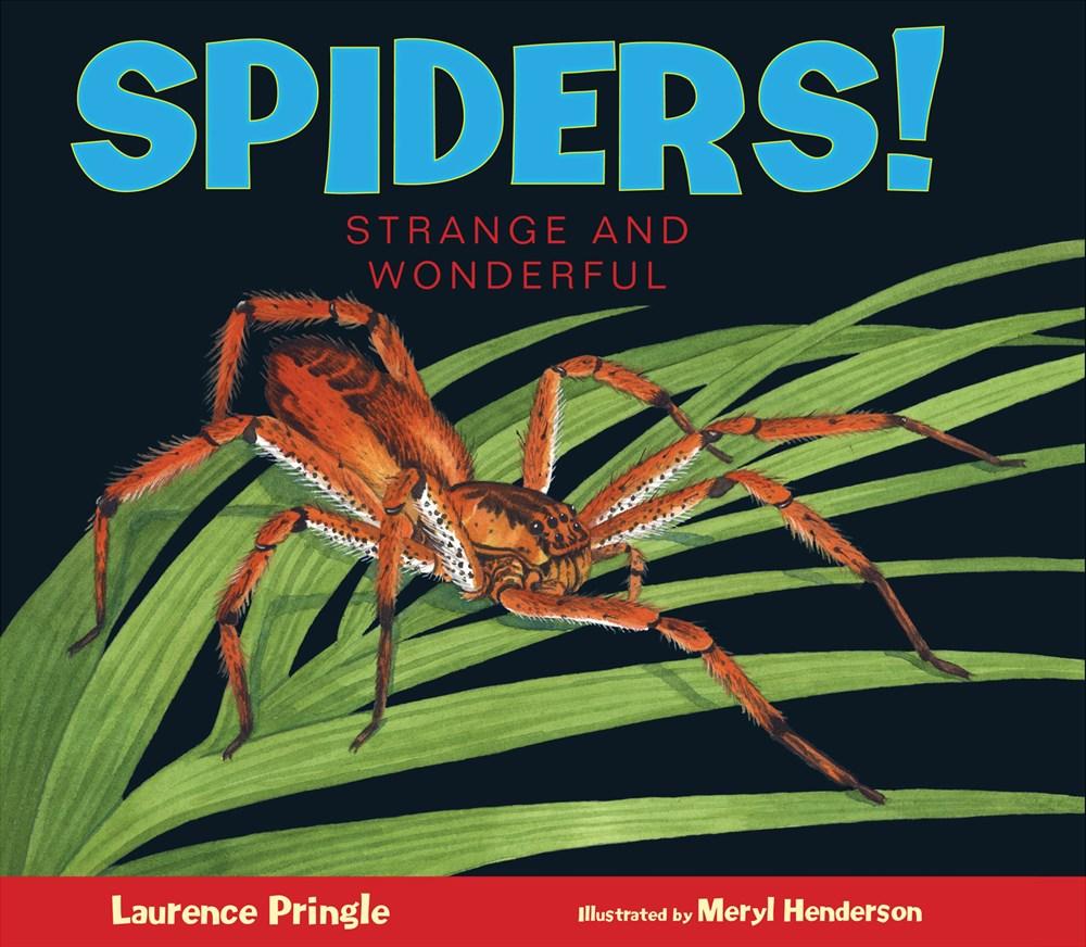 spiderscover.jpg