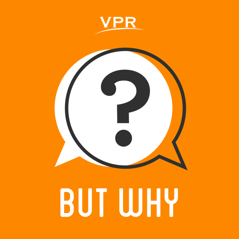 But-Why-Artwork-VPR-Jory-Raphael-20160401.png