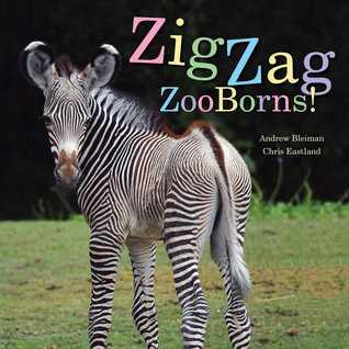 zooborns.jpg