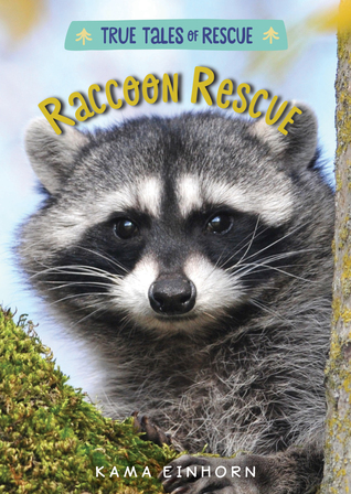 raccoonrescue.jpg