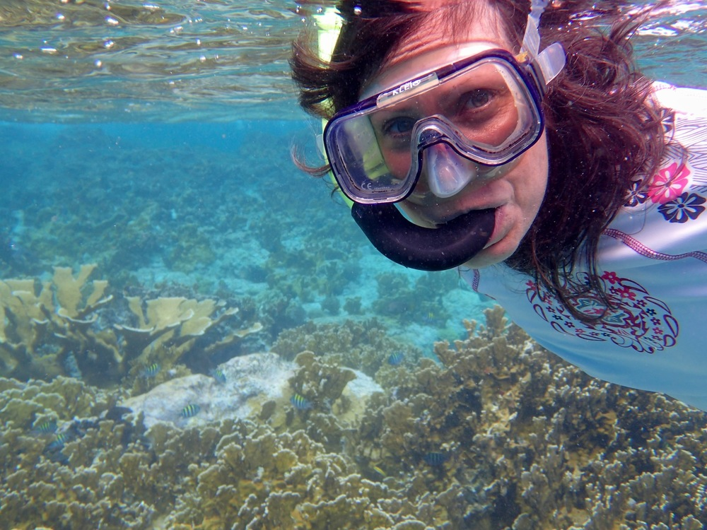 Snorkeling in the BVI's!