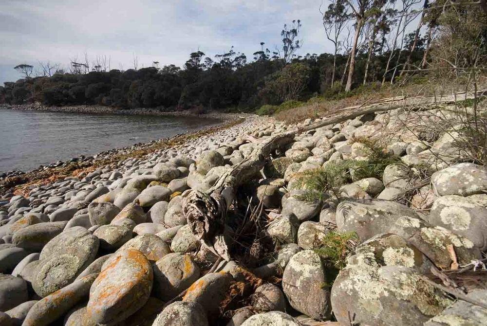 Tasman Bay conservation reserve.