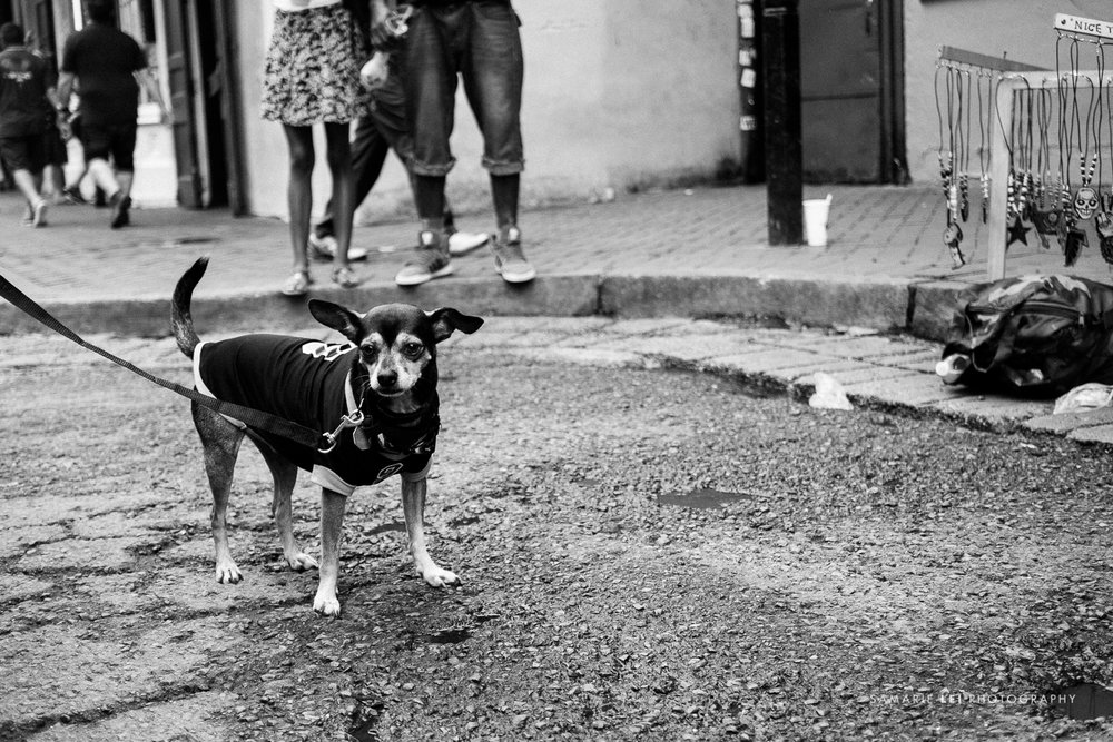 New-Orleans-street-photography-downtown-34.jpg