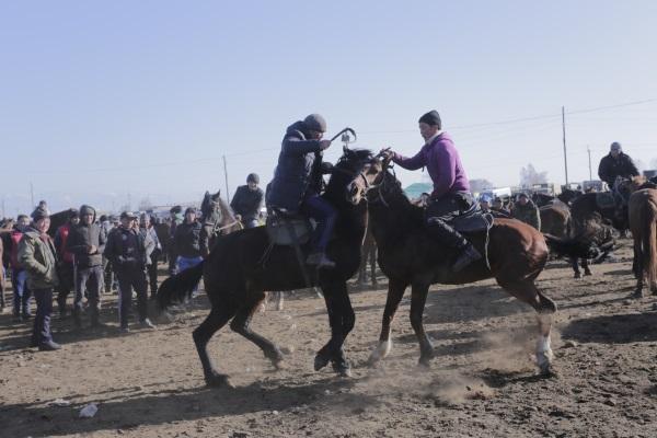Kırgız At Oyunlarını İzleyin