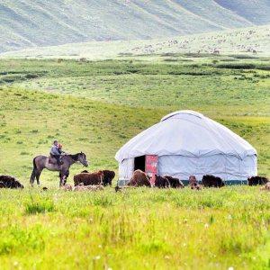 """""""Kırgızistan ve Moğolistan Ulaşım"""""""