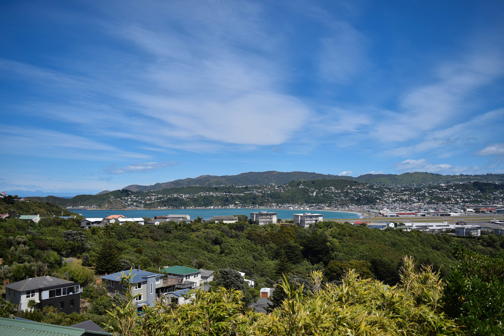 The view from our accommodation, Lyall Bay