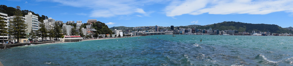 The view of Wellington from Oriental Bay