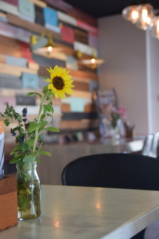Experience Comvita Cafe