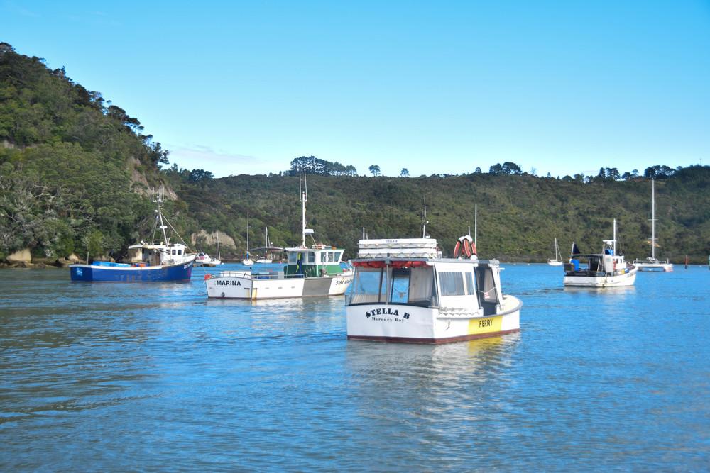 Whitianga boats