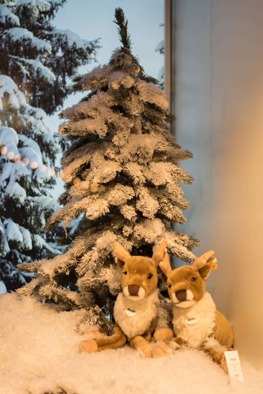 Christmas window displays munich