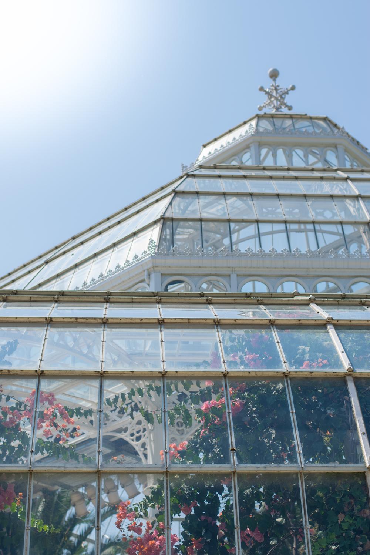 Sefton Park Palm House