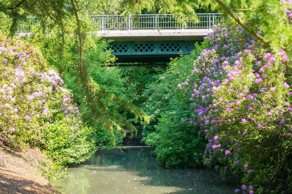 The lovers bridge in Sefton Park