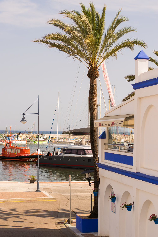 Estepona, costa del sol, san pedro, marbella, day trip from marbella