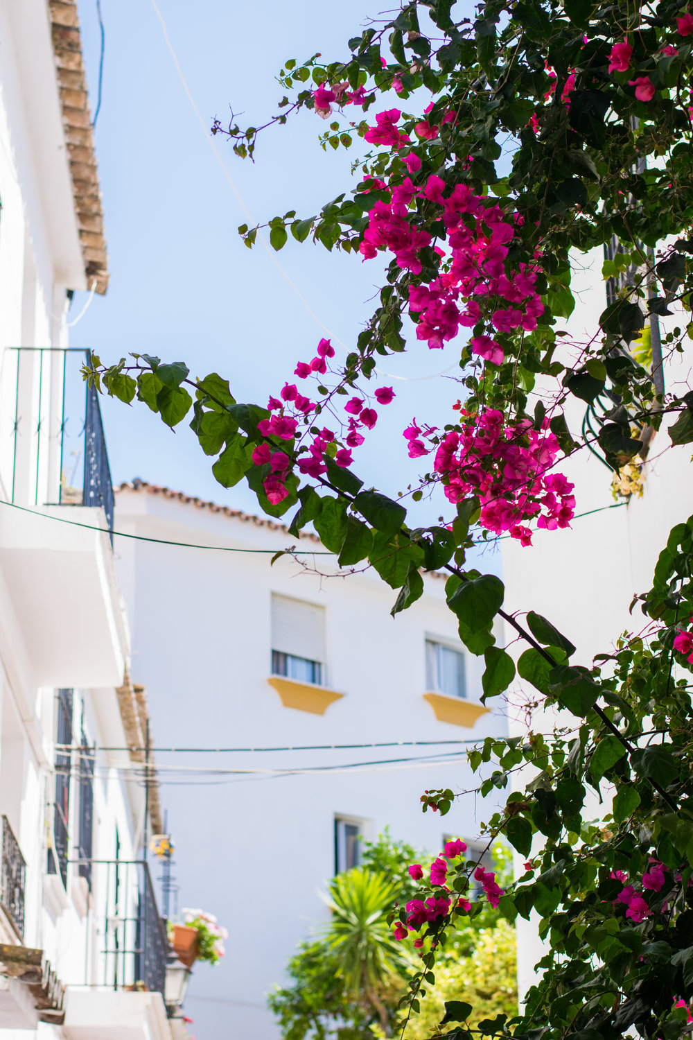 marbella old town, things to see in marbella, places to eat in marbs