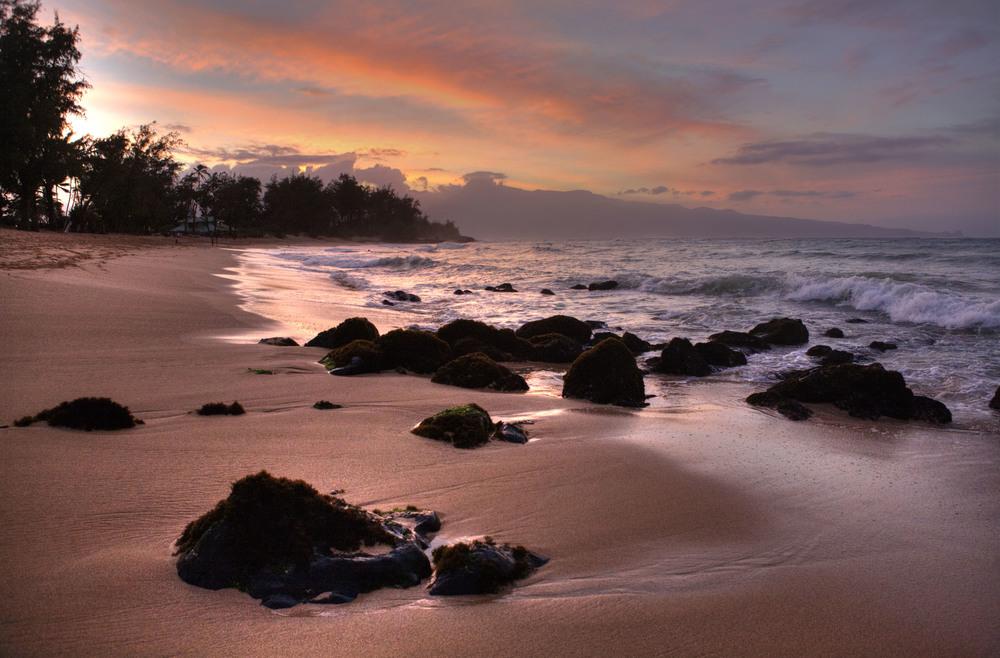 hawaii36.jpg