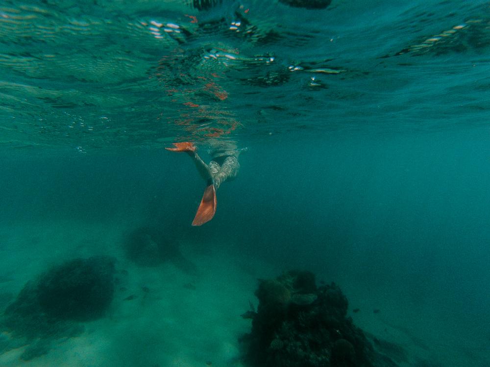 Fiji2016(lowres)-61.jpg