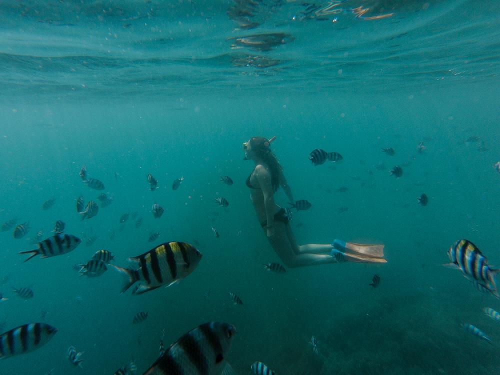 Fiji2016(lowres)-72.jpg
